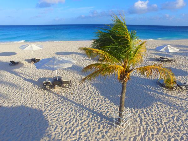 Aruba news recap
