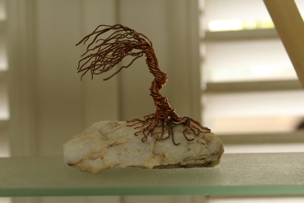 buy-souvenirs-from-aruba-miniature-dividivi-tree